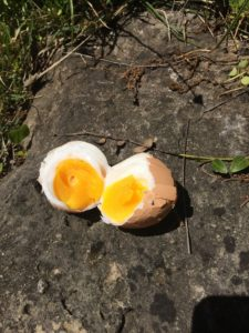 solar oven hard boiled egg