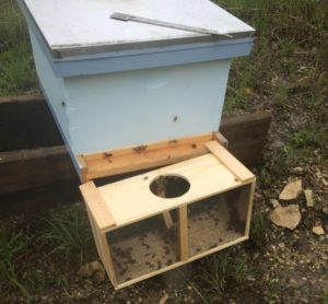 Bee Package Install Complete