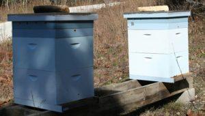 Winter Hive Setup 2016